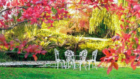 Deze tuinmeubels passen ook goed in jouw tuin