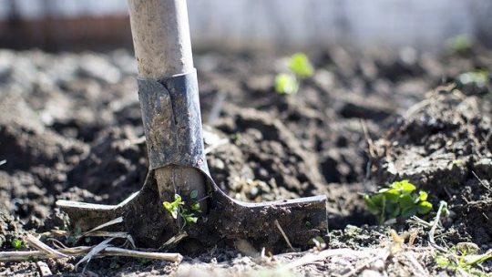 Een mooie tuin zonder teveel onderhoud?